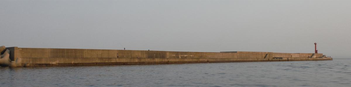11月3日 シイラ メジロ 太刀魚