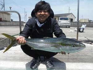 5月30日 ブリ メジロ 太刀魚 サワラ シイラ ヒラメ