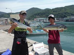 6月1日 シイラ 太刀魚 ヒラメ ホウボウ サワラ