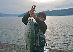 6月2日 ブリ シイラ 太刀魚