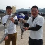 6月19日 太刀魚 アオリイカ