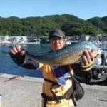 6月24日 シイラ サゴシ 太刀魚