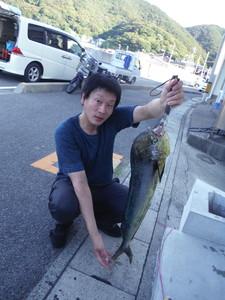 6月25日 シイラ 太刀魚