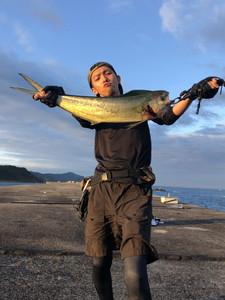 7月15日 シイラ サワラ ソーダ鰹 太刀魚
