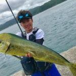 7月21日 ソーダ鰹 太刀魚 サワラ シイラ