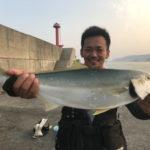 8月18日 ペンペン メジロ シオ 太刀魚 カマス