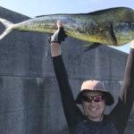 9月8日 シイラ 太刀魚