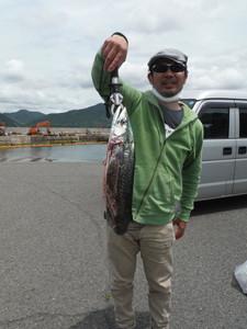 5月22日 サワラ ハマチ グレ 真鯛