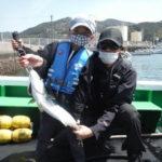 3月31日 メジロ カワハギ チヌ