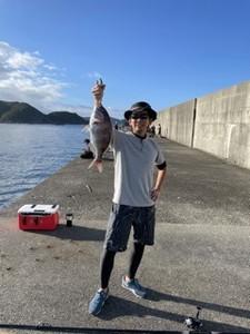 10月11日 石鯛 イシガキ メジロ 真鯛 イサギ 太刀魚 シオ